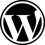 3 Secrets for New WordPress Plugin Developers