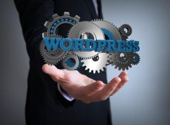 WordPress Plugin Review: Expire Tags
