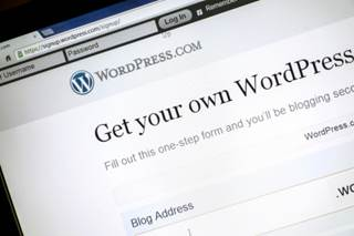 Most WordPress Users Don't Back Up